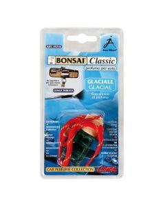 Bonsai Classic - Glaciale