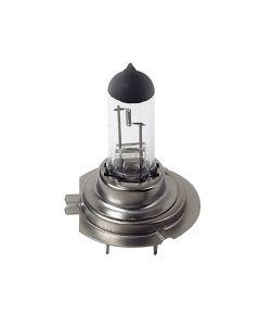 12V Lampada alogena - H7 - 55W - PX26d - 1 pz  - D/Blister