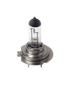 24V Lampada alogena - H7 - 70W - PX26d - 1 pz  - D/Blister